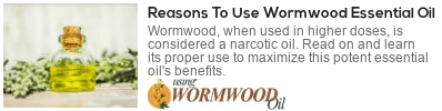 benefits of worm wood oil
