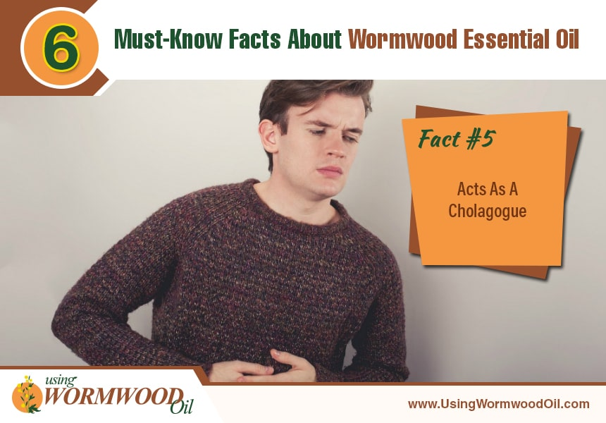 what is wormwood oil used for