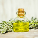 6 Incredible Health Benefits Offered By Wormwood Oil